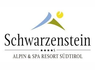 Schwarzenstein 307